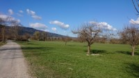Panoramaansicht Bad Feilnbach